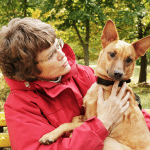 Senior Pet Health